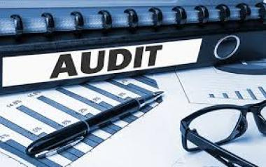 Audit Assessment of Dealers